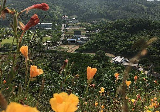 因島村上海賊わたし探訪【5】青木城跡