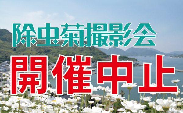 【中止】馬神除虫菊畑での撮影会について